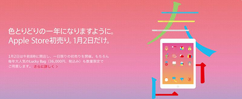 apple_store_lucky_bag_2014-Japan